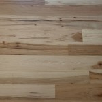 American Hickory 2